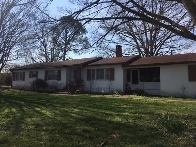 Riceville Single Family Home For Sale: 4078 Hwy 11 South