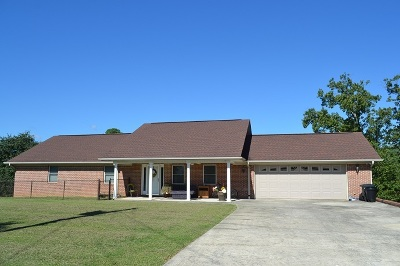 Spring City Single Family Home For Sale: 229 Scenic Hill Drive