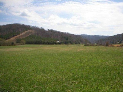Tellico Plains Residential Lots & Land For Sale: 116 Martin Road