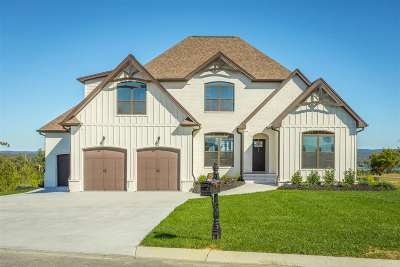 Single Family Home For Sale: 10910 High River Drive
