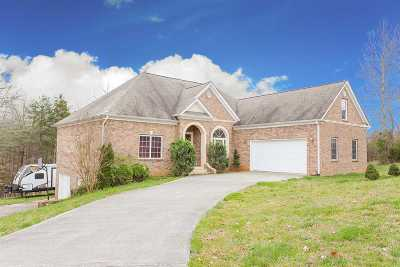 Charleston Single Family Home For Sale: 165 Mill Hamlet Road
