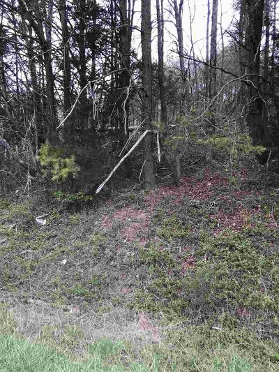 Rhea County Residential Lots & Land For Sale: Watts Bar Hwy