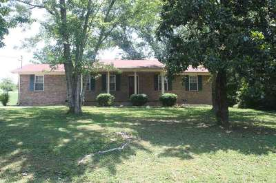 Spring City Single Family Home For Sale: 595 Broyles Road