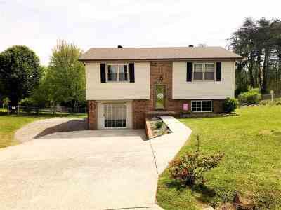 Dayton Single Family Home For Sale: 209 Crawford Street