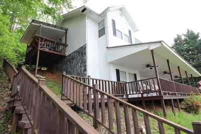 Spring City Single Family Home For Sale: 341 Clearwater Drive