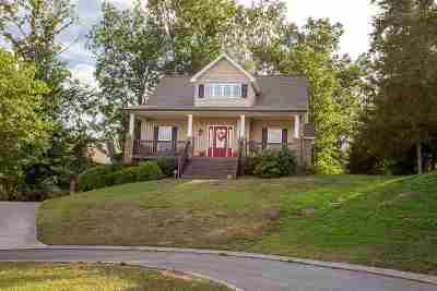 Cleveland Single Family Home For Sale: 193 Silver Springs Trail