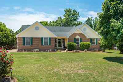 Ooltewah Single Family Home For Sale: 7802 Bebe Branch Lane