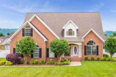 Ooltewah Single Family Home For Sale: 8429 Streamside Drive