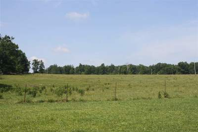 Rhea County Residential Lots & Land For Sale: 1076 McNabb Road