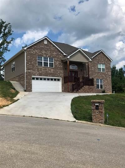 Dayton Single Family Home For Sale: 119 Nicole Drive