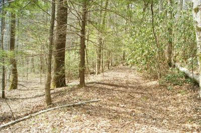 Tellico Plains Residential Lots & Land For Sale: Pond Ridge #2