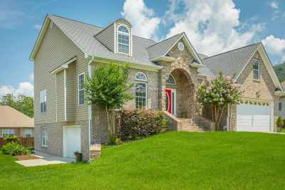 Ooltewah Single Family Home For Sale: 7661 Duskview Court