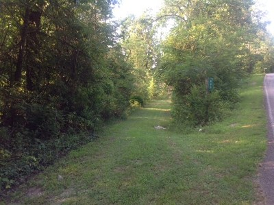 Spring City Residential Lots & Land For Sale: 609 Euchee Chapel Road