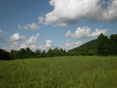 Tellico Plains Residential Lots & Land For Sale: Creek Road