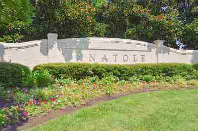 Anatole Residential Lots & Land For Sale: Lot 60 Anatole