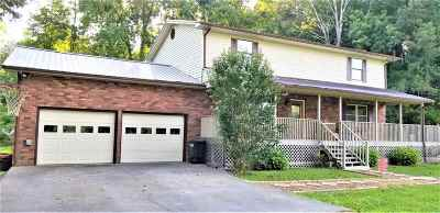 Riceville Single Family Home For Sale: 296 County Road 64