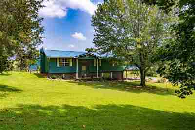 Riceville Single Family Home For Sale: 401 County Road 709
