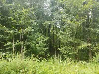 Spring City Residential Lots & Land For Sale: 15.14 Acres Stump Hollow Road #15.14 Ac