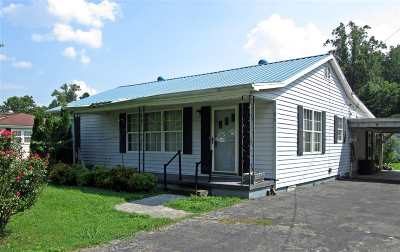 Spring City Single Family Home For Sale: 186 Evans Ave