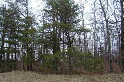 Rhea County Residential Lots & Land For Sale: 26.33 Ganaway Trail