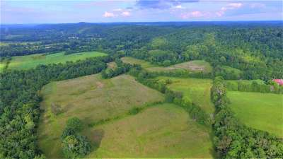 Decatur Residential Lots & Land For Sale: S. Nopone Valley Rd