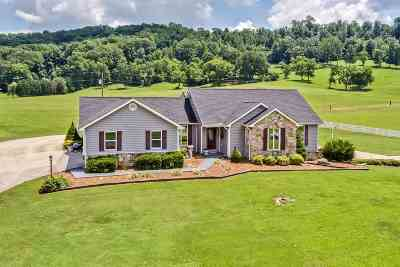 Riceville Single Family Home For Sale: 347 County Road 67