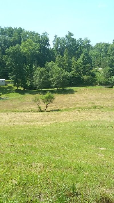 Roane County Residential Lots & Land For Sale: 142 Ponders Gap