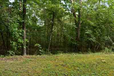Rhea County Residential Lots & Land For Sale: Lot 176 & 177 Scenic Lakeview Drive #lot 176