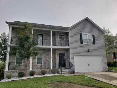 Ooltewah Single Family Home For Sale: 8435 Lexie Lane