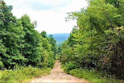 Spring City Residential Lots & Land For Sale: Tbd Browns Holler