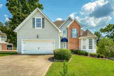 Chattanooga Single Family Home For Sale: 8509 Georgetown Trace Lane