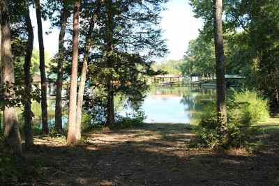Spring City Residential Lots & Land For Sale: 785 Groover Road