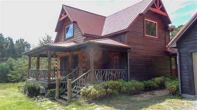 Ocoee Single Family Home For Sale: 330 Mountain View Cir
