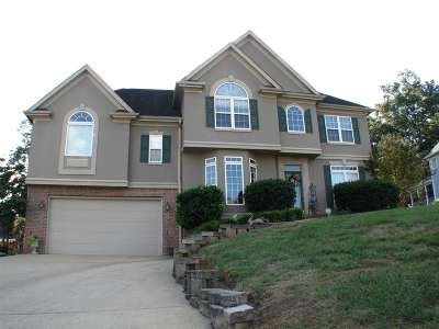 Ooltewah Single Family Home For Sale: 9482 Lazy Circles Drive
