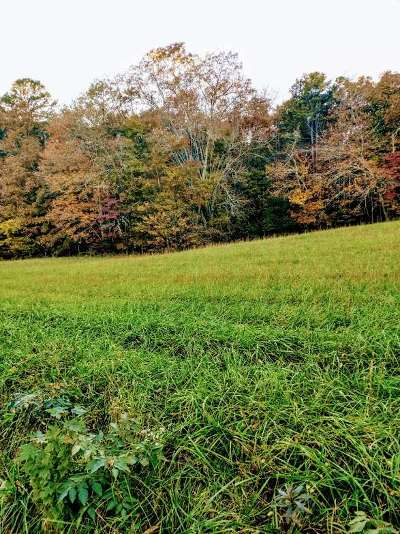 Rhea County Residential Lots & Land For Sale: 46.79ac Neck Road #Neck Roa