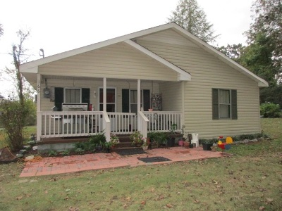 Single Family Home Contingent: 166 Henry Mize Road