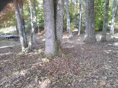 Spring City Residential Lots & Land For Sale: Lot 24 Spring Harbor Dr