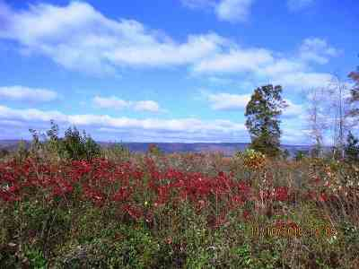 Rhea County Residential Lots & Land For Sale: Sneed Rd