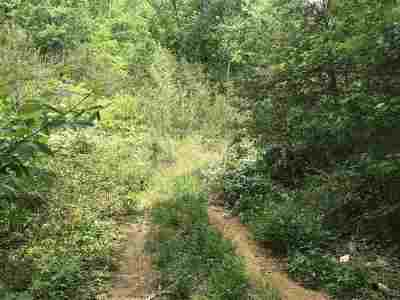 Rhea County Residential Lots & Land For Sale: Blueberry Hill Rd #4 lots o