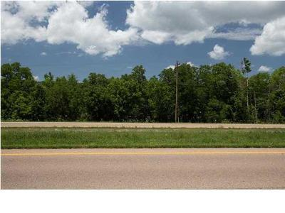 Rhea County Residential Lots & Land For Sale: 25 Acres Rhea County Hwy