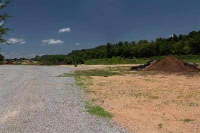 Rhea County Residential Lots & Land For Sale: 15 Acres Rhea County Hwy
