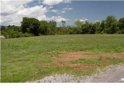 Rhea County Residential Lots & Land For Sale: 3 Acres Rhea County Hwy