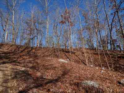 Rhea County Residential Lots & Land For Sale: Lot 492 & 493 Rockview Drive #492 &amp