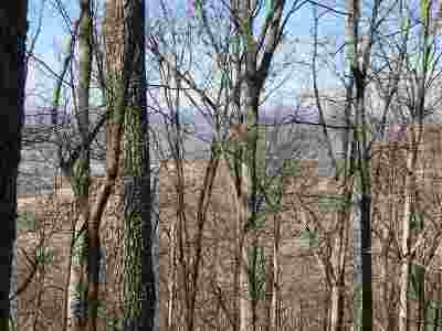 Etowah Residential Lots & Land For Sale: 5.5 Acres Off Co Rd 875