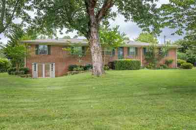 Single Family Home For Sale: 533 Long Mill Rd