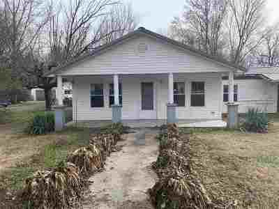 Spring City Single Family Home For Sale: 156 Short Street