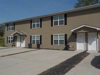 Cleveland Single Family Home For Sale: 1299 Pond Street SE