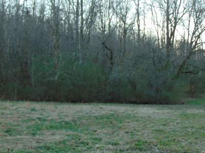 Roane County Residential Lots & Land For Sale: 299 Raby Hollow