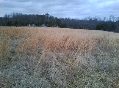 Delano Residential Lots & Land For Sale: Tract #8 Chestuee Road