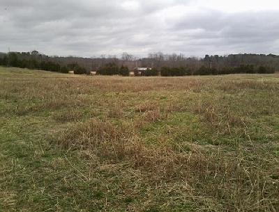 Delano Residential Lots & Land For Sale: Tract 1 Dentville Road